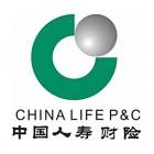 中国人寿保险(股份)有限公司