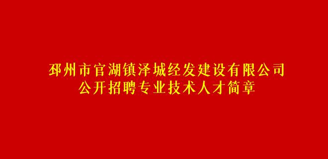 邳州市官湖镇泽城经发建设有限公司公开招聘